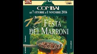 72a Festa dei Marroni - Combai