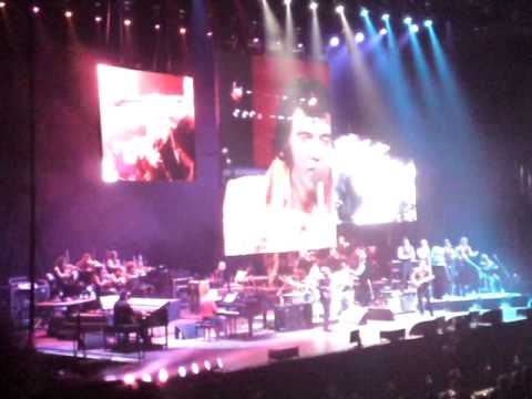 Elvis in concert-london 2010
