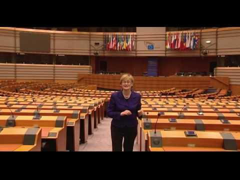 European Parliament - What is the role of the European Parliament? What is its involvement in making the laws we adhere to? Mairead McGuinness, EPP-ED MEP for Ireland East, takes ...