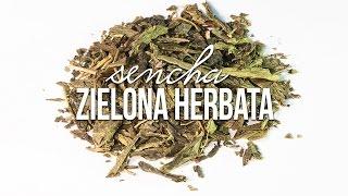 Herbata zielona Sencha: parzenie herbaty, właściwości, pochodzenie, produkcja. Czajnikowy.pl Chcesz więcej? Portal i sklep z herbatą http://czajnikowy.pl Cza...