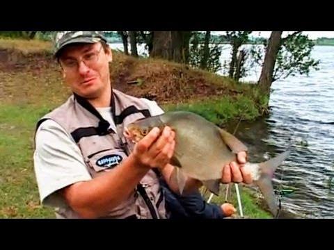 передача о рыбалке на днепре