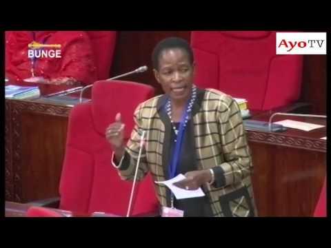 Profesa Anna Tibaijuka akichangia Wizara ya Elimu May 27 2016