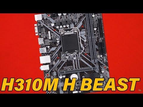 Budget master -Gigabyte h310m H