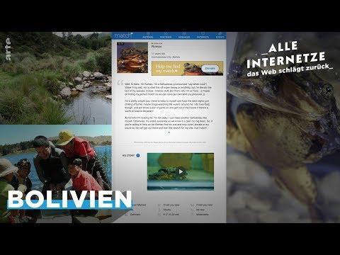 Bolivianischer Wasserfrosch: Romeo sucht Julia – damit seine Art nicht ausstirbt – ARTE