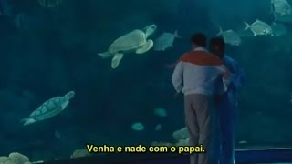 Nonton Ocean Heaven     Assistir Completo Legendado Portugues Film Subtitle Indonesia Streaming Movie Download