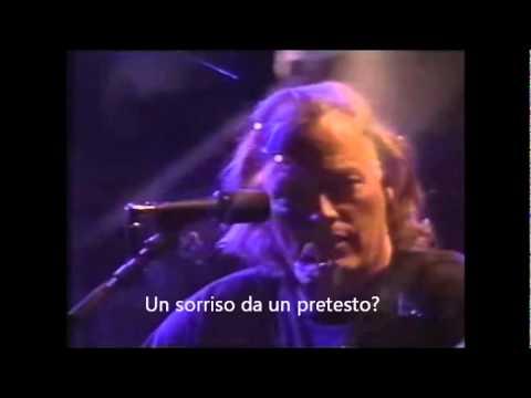 Wish you were here (sottotitoli ita)