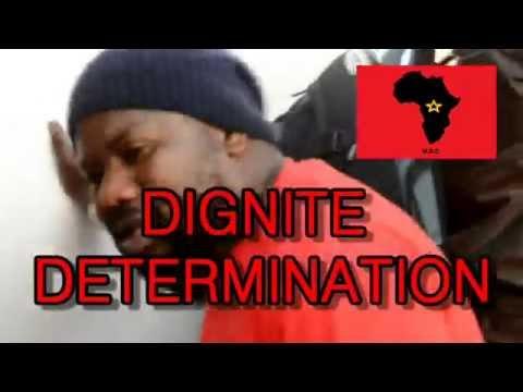 Les Africains p�n�tre  dans la banque de France  e