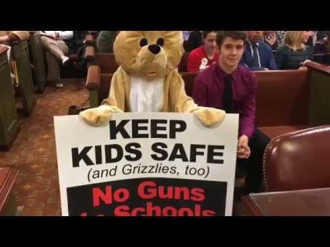 Teachers in Pennsylvania could carry guns in public schools