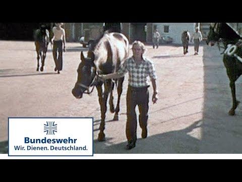 Classix: Stallfarbe – NATO-Oliv (1976) - Bundeswehr