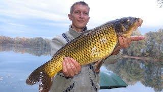 Рыбалка осенью, ловля карпа, форели , угря, октябрь