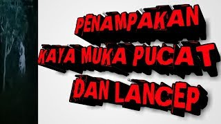Video PENAMPAKAN LANCEP DAN KAYAk MUKA PUCAT. MP3, 3GP, MP4, WEBM, AVI, FLV Maret 2019