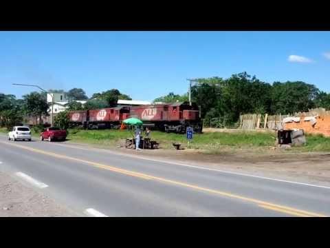 Trem passando em Araquari/SC, perto do Canal do Linguado