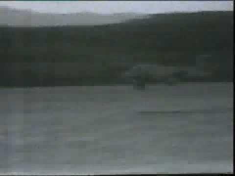 El FMA IA-58 Pucará (en quechua:...