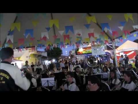 Seleção Zé Ramalho - Banda Pio X (Andrelândia - MG)