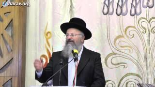 """הרב שמואל אליהו – פרשת בשלח (ה'תשע""""ד)"""