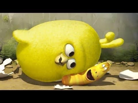 LARVA - CHICK | Cartoon Movie | Cartoons For Children | Larva Cartoon | LARVA Official (видео)