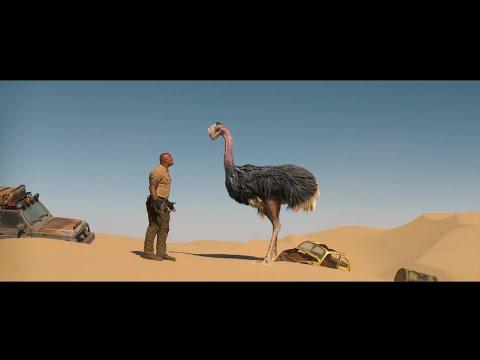 Jumanji 2 (2019) | That is an ostrich