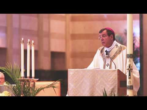 Humanae Vitae 50th Anniversary: Archbishop Allen H. Vigneron