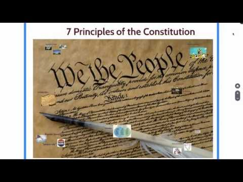 7Principles Constitution