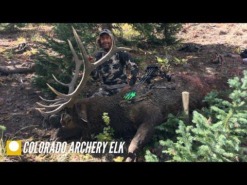 HNH Colorado Public Land Archery Elk Hunt 2019