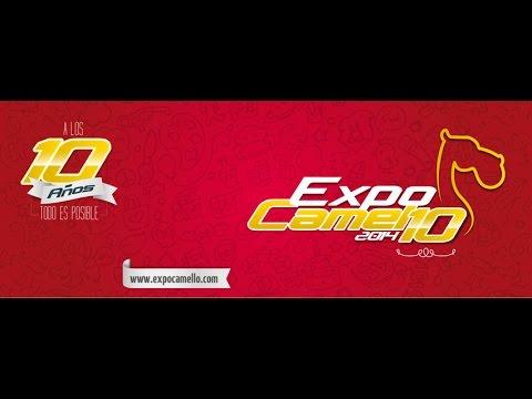 Balance General ExpoCamello 2014