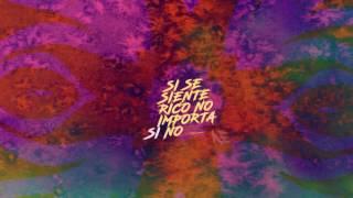 Anonymous - No Se Ve Remix [Feat Arcangel, Zion & Lennox, Pusho, Plan B]   (Video Lyrics + Singl