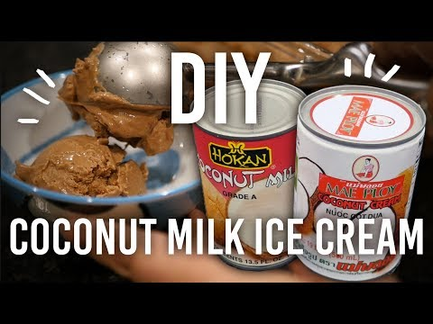 How To Make Coconut Milk Chocolate Ice-cream
