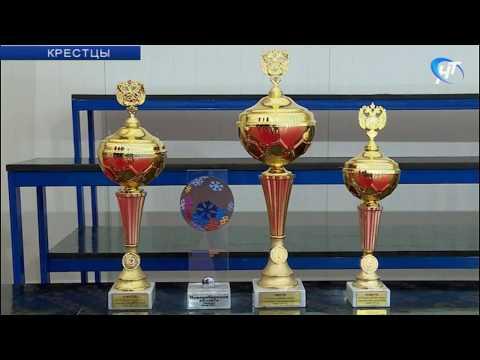 Команда Новгородской области заняла 1-е место на Всероссийских сельских спортивных играх