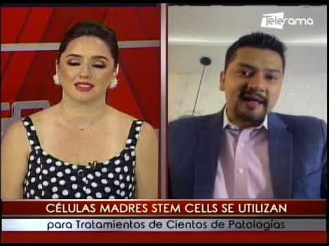 Telerama transmite Promo TV Lunes a Viernes 14h30 Sábado y Domingo 08h30