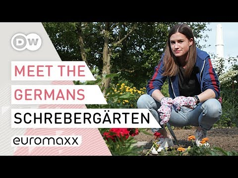 Der deutsche Schrebergarten | Meet the Germans