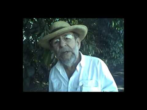 O Mangalarga de Jaú (parte 1), por José Marcio Castro Alves.