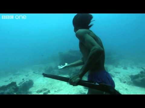 Mies sukeltaa 20 metrin syvyyteen ja kalastaa merenpohjassa jopa 5 minuuttia