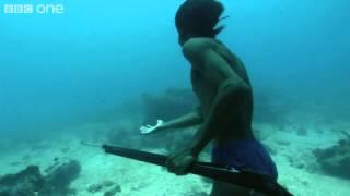 Video Superhuman Filipino diver from the Badjao tribe ;BBC MP3, 3GP, MP4, WEBM, AVI, FLV November 2018