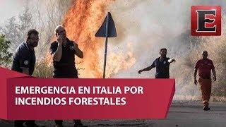Los incendios forestales que afectan el sur de Italia dejaron las primeras víctimas mortales en Calabria.16 de julio 2017COMENTA ESTE VIDEO Y COMPARTELO CON TUS AMIGOSPara más información entra: http://www.youtube.com/excelsiortvNo olvides dejarnos tus comentarios y visitarnos enFacebook: https://www.facebook.com/ExcelsiorMexTwitter: https://twitter.com/Excelsior_MexSitio: http://www.excelsior.com.mx/tvSuscríbete a nuestro canal: https://www.youtube.com/channel/UClqo4ZAAZ01HQdCTlovCgkA