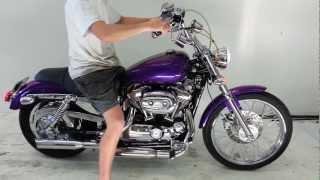 8. 2006 Harley Davidson Sportster 883 For Sale!!!