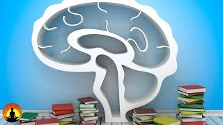 Video 2 Hour Study Music Brain Power: Focus Concentrate Study, ☯130 MP3, 3GP, MP4, WEBM, AVI, FLV November 2017