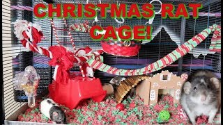 CHRISTMAS THEMED RAT CAGE | Rat Cage Tour! by Maddie Smith