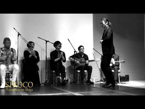 SIROCO Flamenco en Shiga 2/3