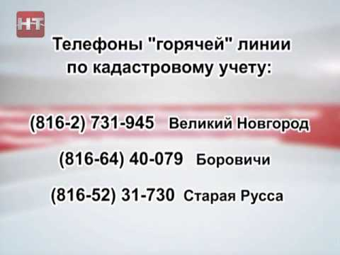 30 июля филиал Федеральной кадастровой палаты Росреестра по Новгородской области проведет горячую телефонную линию