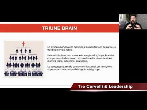 alessandro vella tre cervelli e leadership