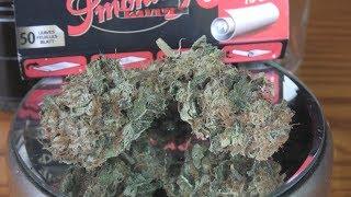 Acid Dough Marijuana Monday by Urban Grower
