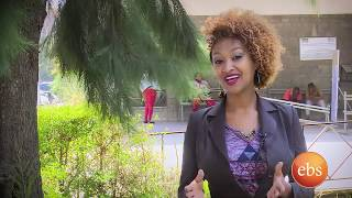 አዲስ ህይወት  (ስለ ስትሮክ) / New Life EP 233 (About Stroke)