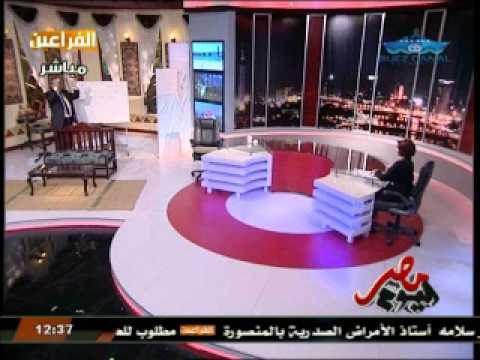 بالفيديو.. عكاشة:  يوم 28 نوفمبر هيكون فيه ضرب نار عشوائي على المارة في الشوارع