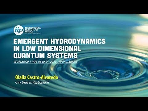 Entanglement Dynamics in the Ising Field Theory: a QFT Study - Olalla Castro Alvaredo