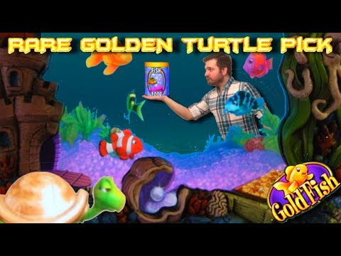 Live Play on Goldfish Slot Machine with Bonuses and Big Win – Amazing Golden Turtle Pick!!!