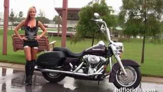 2. Used 2005 Harley Davidson Road King Custom Motorcycles for sale in Florida