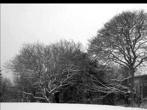 January 22, 2013. Birmingham. Winter Snow Scenes. Black & White.