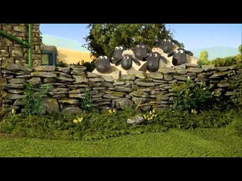 Shaun The Sheep Animation.mkv