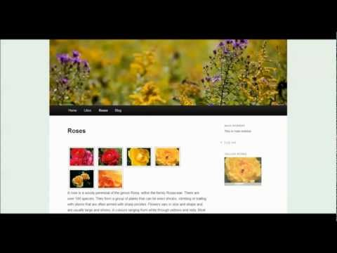 Basic Introduction to Using NextGen Gallery for WordPress