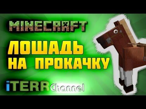 Minecraft. Лошадь На Прокачку.